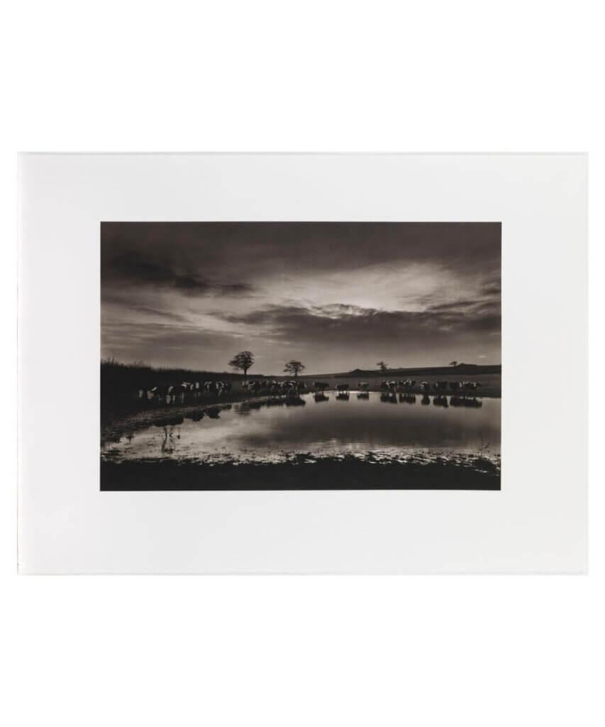 Upton Noble, flooding meadow, Somerset, UK