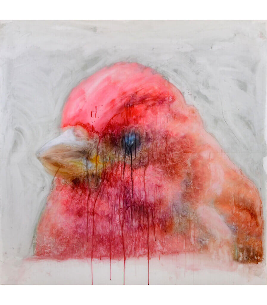 Portraits<br>(Purple Finch)