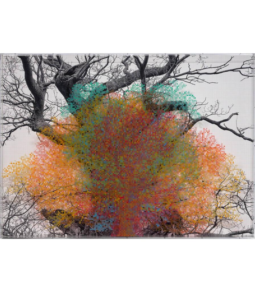 Numbers and Trees: London Series 1, Tree #5, Eldon Street