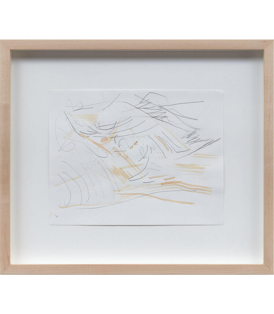 Untitled (Late Nature Drawing)